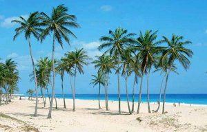 playa bocaciega